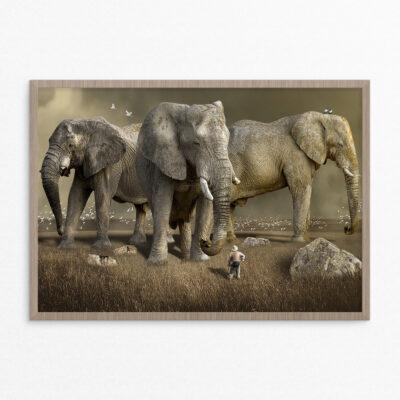 Plakat, fantasi, elefanter