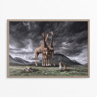 Plakat, fantasi, giraffer