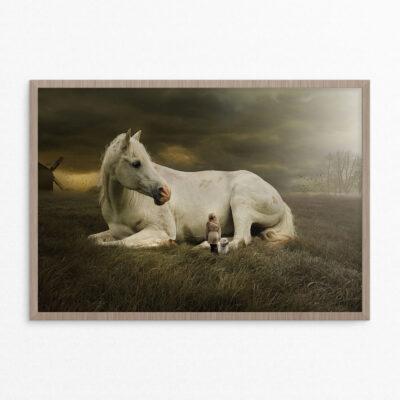 Plakat, fantasi, hest