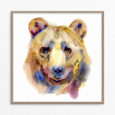 plakat, dyr, bjørn, pastel