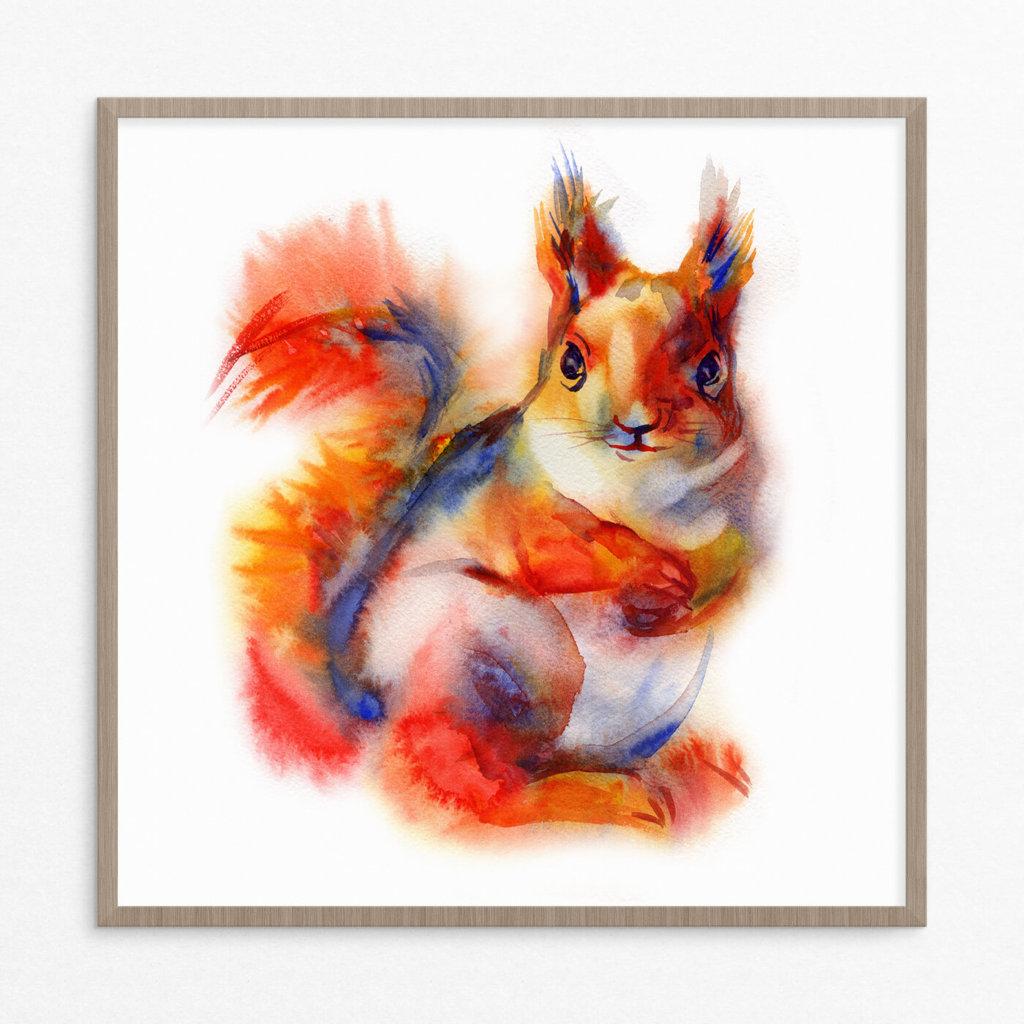 plakat, dyr, egern, pastel