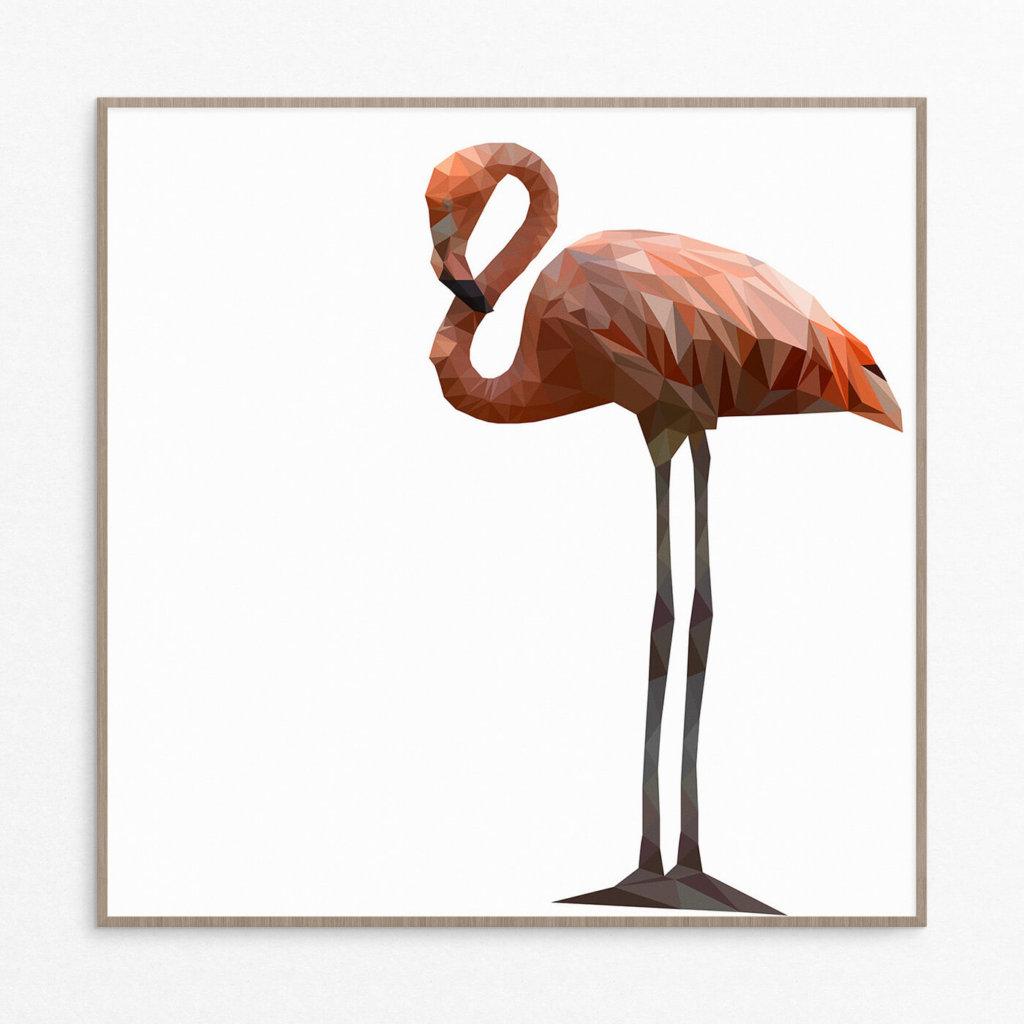 plakat, dyr, flamingo, pastel 50-50