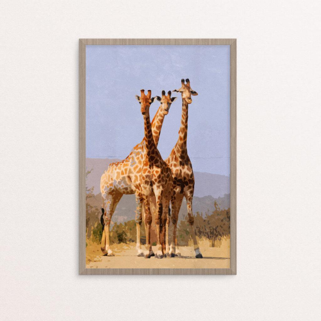 plakat, dyr, giraffer, retro