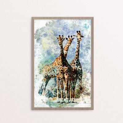 plakat, dyr, giraffer, vandfarve,