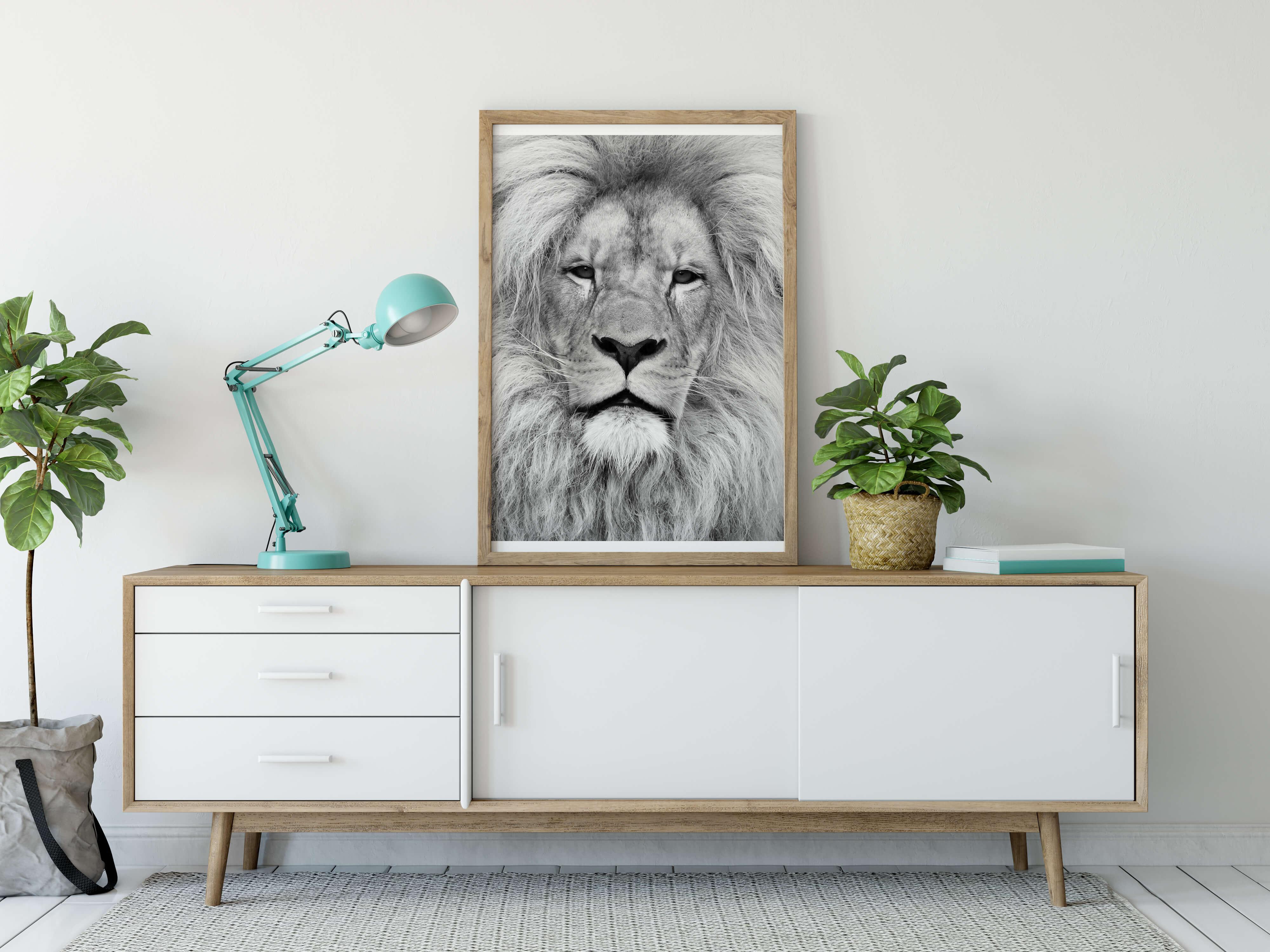 Plakat, løve